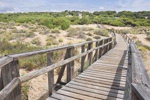 Spanish beah dunes and wood bridge