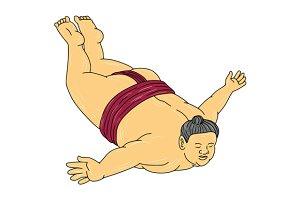 Japanese Sumo Wrestler Skydiving