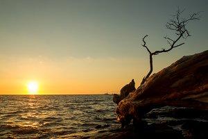 Sunset on Big Island, Hawaii