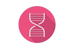 DNA chain model. Flat linear long shadow icon
