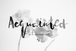 Acquainted Script Brush Font