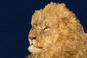 Little Lion Man Graphic