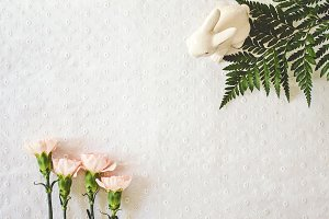 Blush Pink Carnations with Bunny