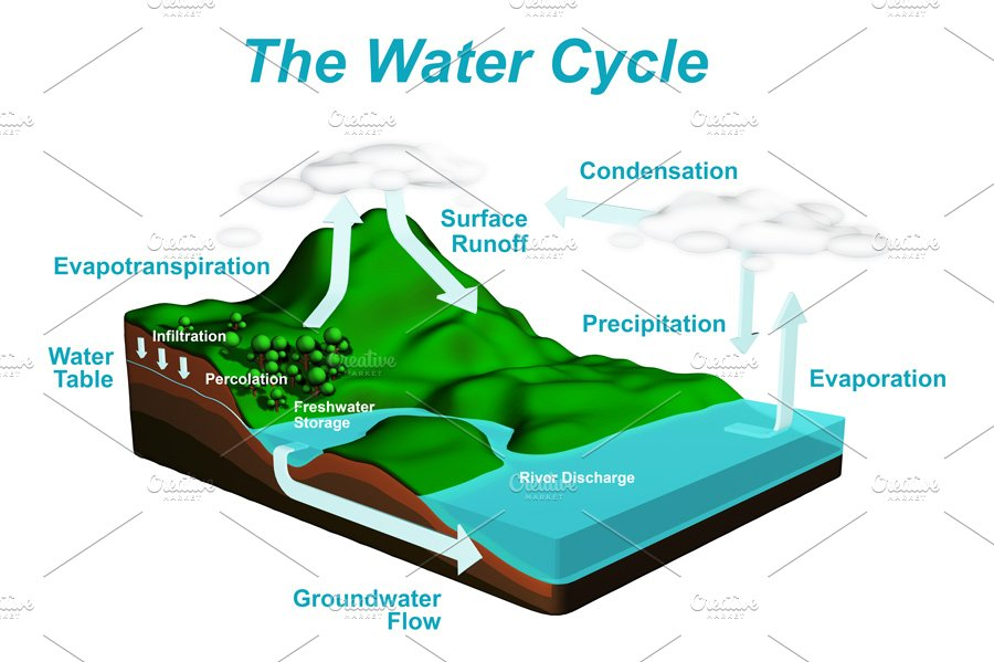The water cycle diagram illustrations creative market ccuart Choice Image