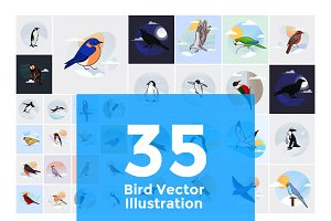 35 Bird Illustration Stock