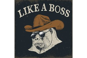 Steep gorilla in cowboy hat