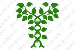 Double Helix DNA Plant Concept