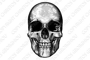 Skull Retro Style Drawing