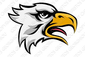 Eagle Mean Animal Mascot