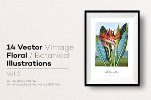 14 Vector Floral Illustrations v.2