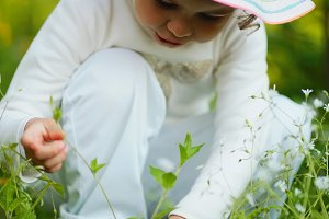 little girl collecting plants in the forest