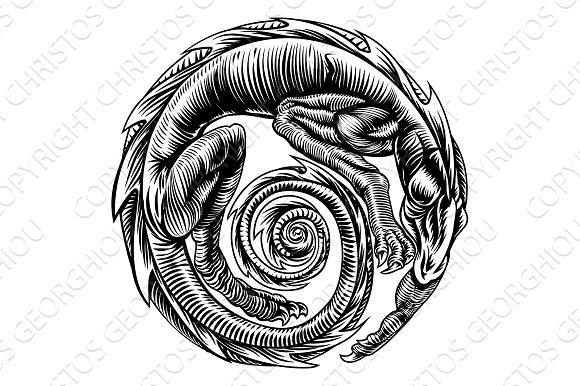 Dragon Vintage Woodcut