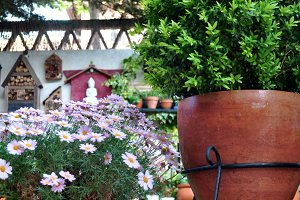 Cheerful garden with flower pots
