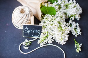 Spring gift concept with white lilac
