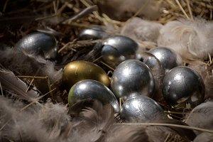Silver & Gold Eggs