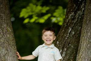 boy climbs big tree in park