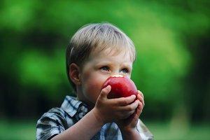 little boy eating big red apple