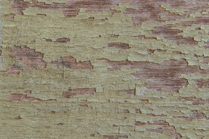 tear paper on old wood texture