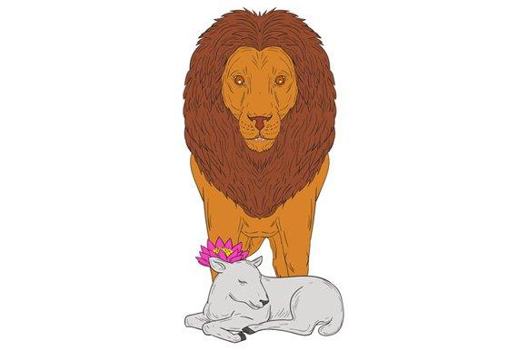 Lion Standing Over Lamb Lotus