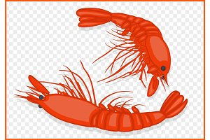 shrimps isometric vector
