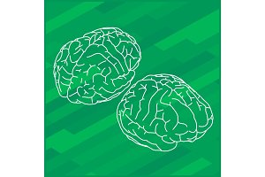 Vector outline illustration human brain.