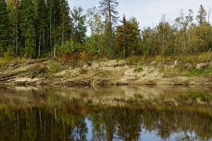 Siberia, the taiga river bank of the Big Yugan