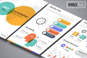 Pro Flat Infographic Brochure 9
