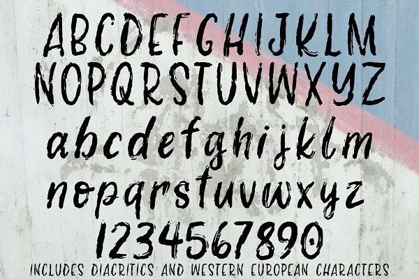 Best Sweet Revenge hand-lettered font Vector