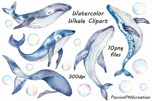Watercolor Whale Clipart