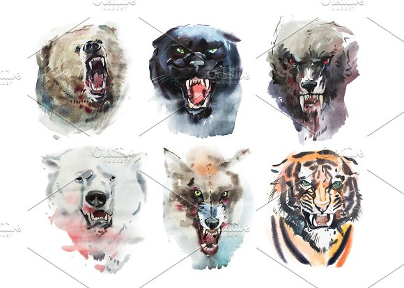 Watercolor Drawing Animal Portrait On White Background