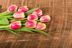 Bouquet of fresh pink and yellow tulips