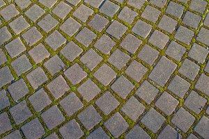 Brick paver stones on a pathway