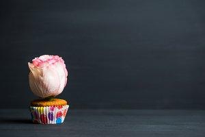 Vanilla cupcake with pink rose