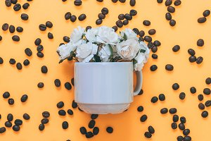 white roses in a Cup