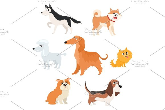 Cute Dog Characters Of Various Breeds Big And Small