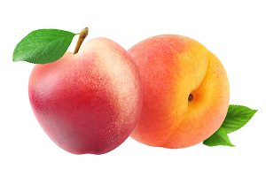 Isolated peach and nectarine