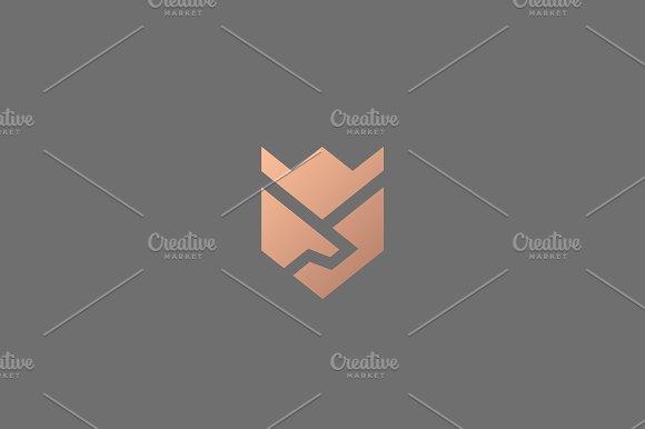 Handshake Wings Crown Flower Vector Logo Deal Partnership Shield Logotype Luxury Team Icon Symbol