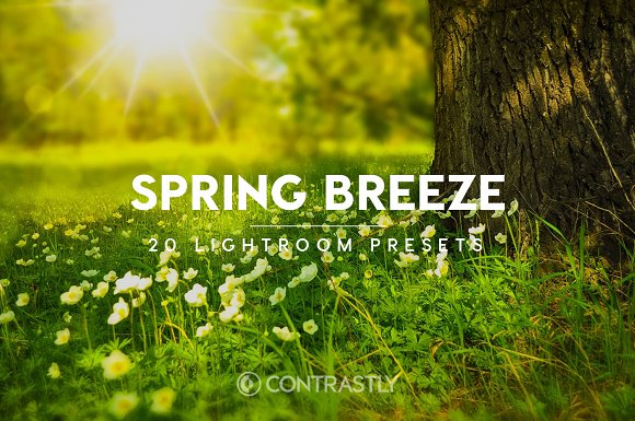Spring Breeze Lightroom Presets