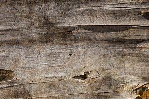 cracked plywood