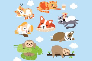 Cute Lazy Animals - Dog, Cat, Sloths
