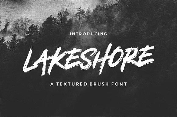lakeshore brush font display fonts creative market