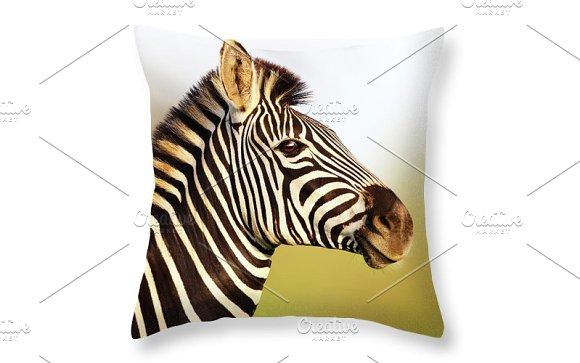 Zebra In Golden Sunlight Print