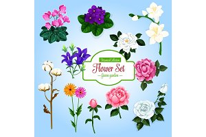 Flower set with garden and house flowering plants