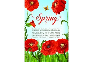 Vector spring time greeting card of poppy flowers
