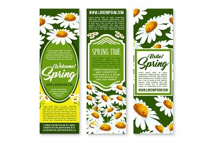 Spring flower banner with daisy floral background