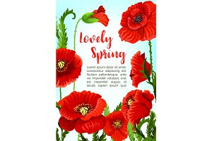 Vector poppy flowers for spring time holidays