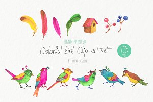 Colorful bird watercolor clipart