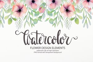 Watercolor floral design elements