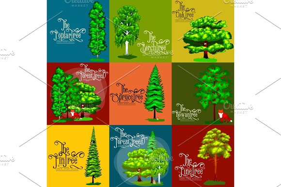 Wild Forest Green Trees Plants And Animals Cartoon Vector Set In Outdoor Park In The With Branch Leafs Pine Tree Oak Spruce Birch Poplar Rowan Maple Fin