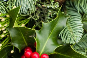 Evergreen arrangement with holly